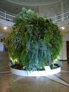 Sphère végétale INRA 07.10.2015.