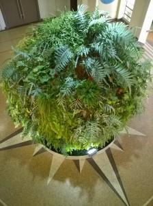 Sphère végétale INRA 08.10.2015