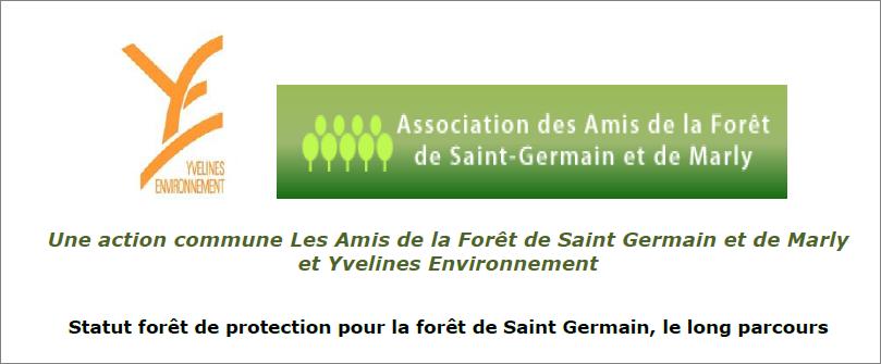 Forêt de protection _ le long parcours _