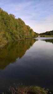 L'étang du Manet