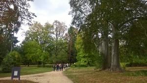 En direction du potager du Domaine de Madame Elisabeth